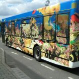 large-vehicle-graphics-Dockside Shuttle Bus Wrap (2)